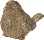 Vtáčik zlatý