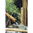 Bambusový kolík lakovaný 270 cm / 6040221