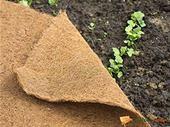 Kokosová plachta v rolke / 6070139