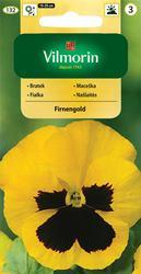 Fialka veľkokvetá švajčiarska žltá Firnengold