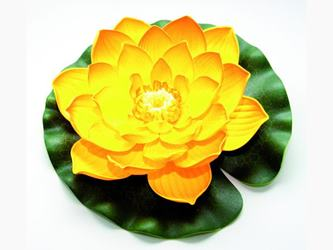Lotus Foam Yellow 20 / 123672